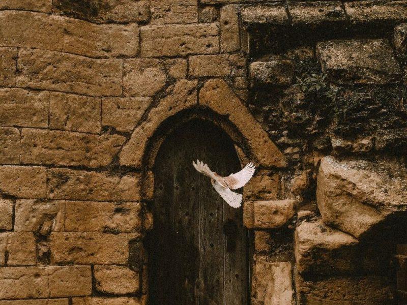 espiritu-santo-cathopic